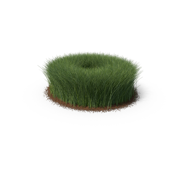 Grasses: Grass & Dirt Shape Tall PNG & PSD Images