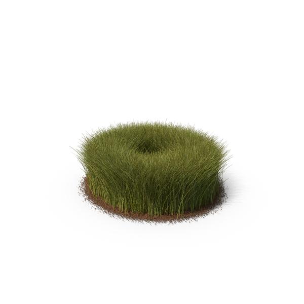 Grass & Dirt Tall PNG & PSD Images