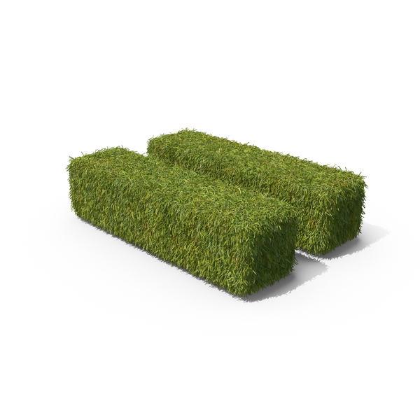Grass Equal Sign PNG & PSD Images