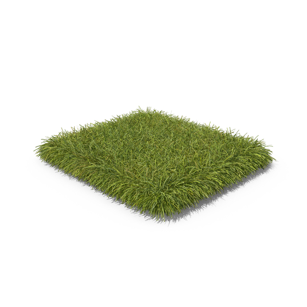 Summer: Grass Patch PNG & PSD Images