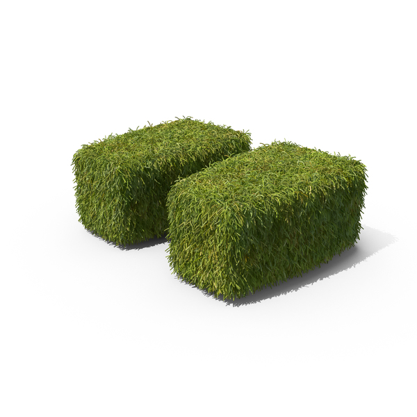 Topiary: Grass Quote Symbol on Ground PNG & PSD Images