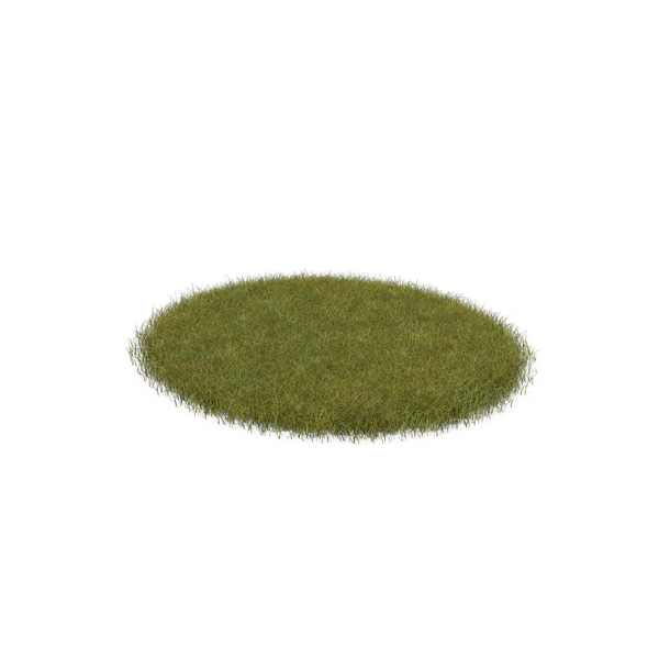 Grass Shape PNG & PSD Images