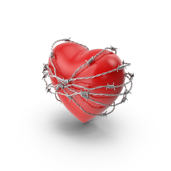 Shape: Heart in Barbed Wire Object