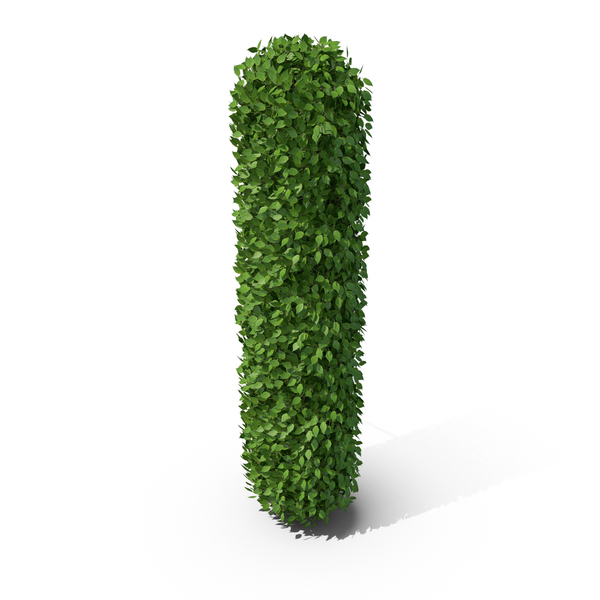 Hedge Shaped Letter I PNG & PSD Images