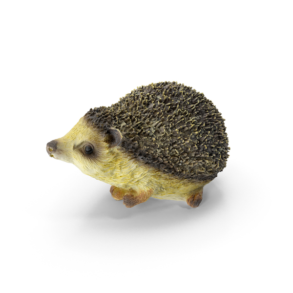 Hedgehog Statue Decoration PNG & PSD Images