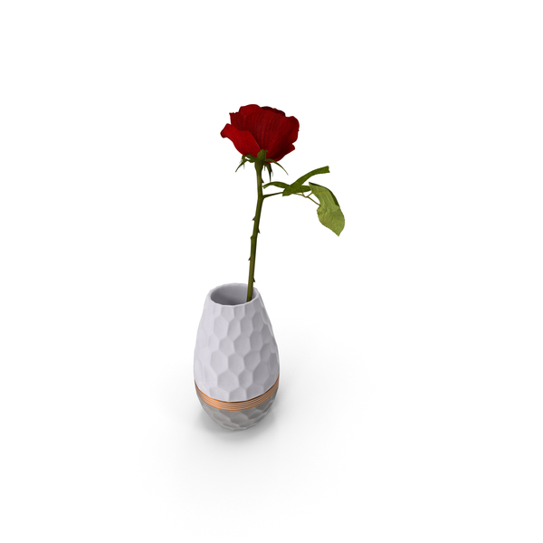 Hexagon Vase with Rose PNG & PSD Images