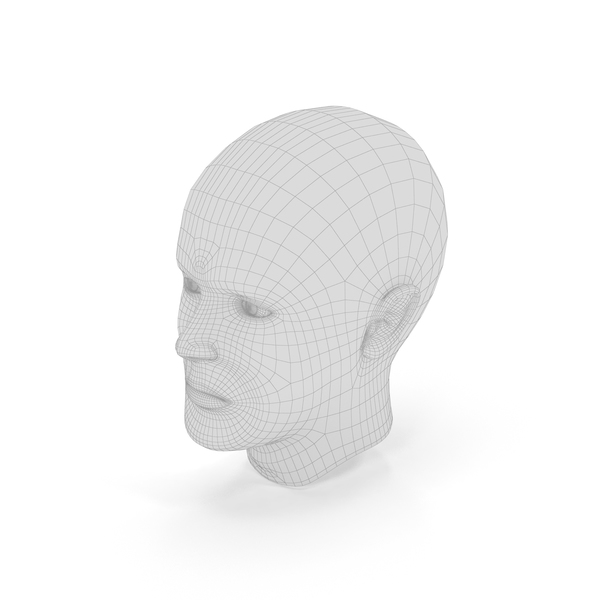 Male: Human Head Wireframe PNG & PSD Images