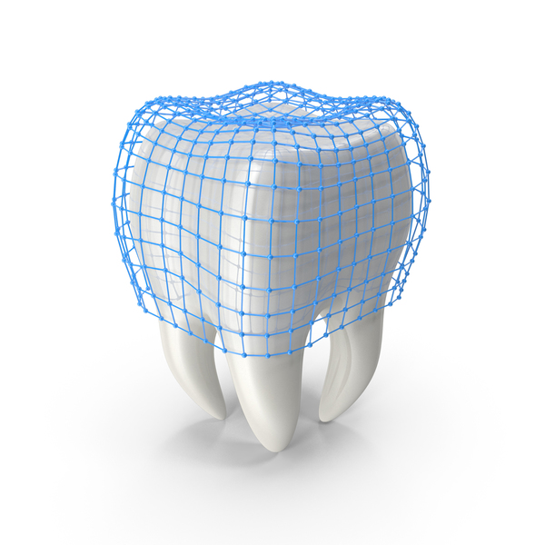 Human Tooth with Protection Grid PNG & PSD Images
