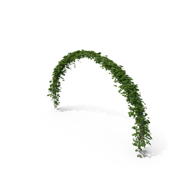Ivy Arch Object