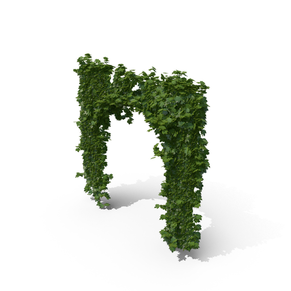 Ivy Archway PNG & PSD Images
