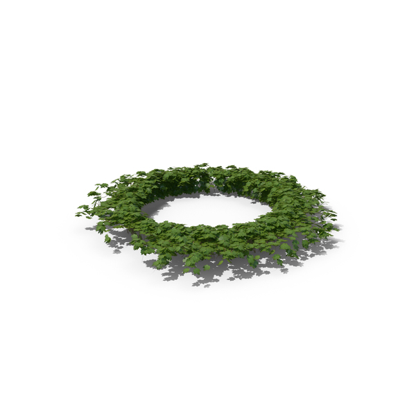 Ivy Circle PNG & PSD Images
