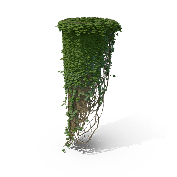 Ivy Column Object