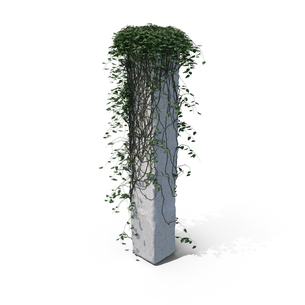 Ivy on a Column PNG & PSD Images