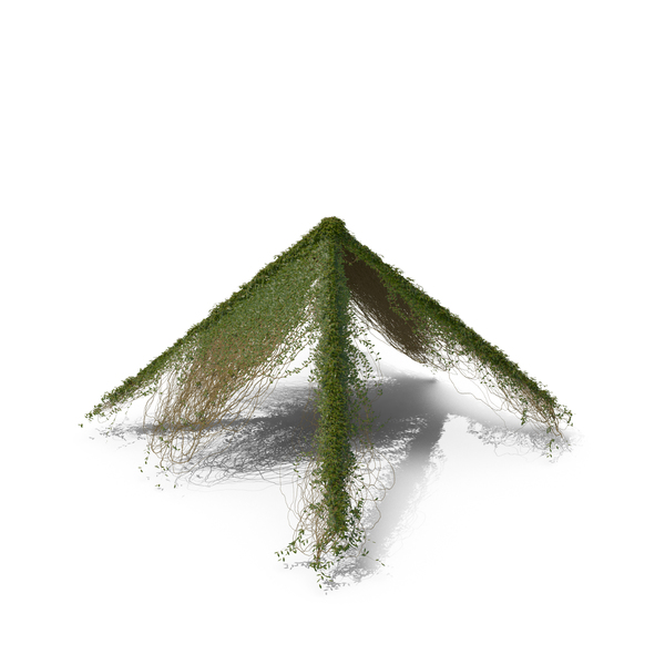 Ivy Roof Shape PNG & PSD Images