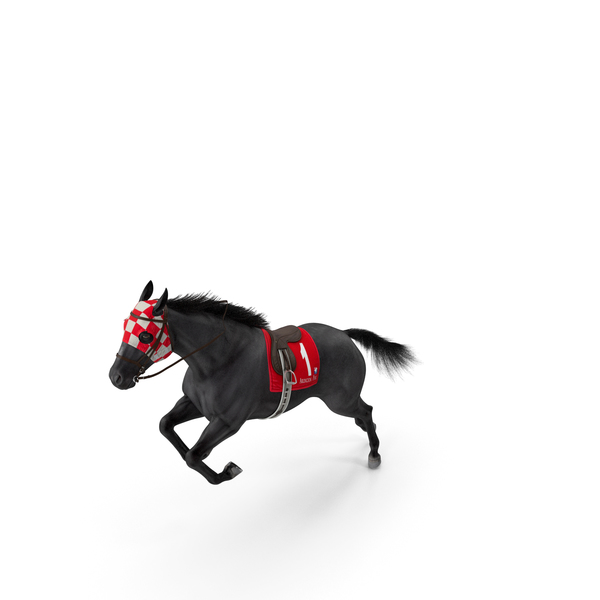 Jumping Black Racing Horse Fur PNG & PSD Images
