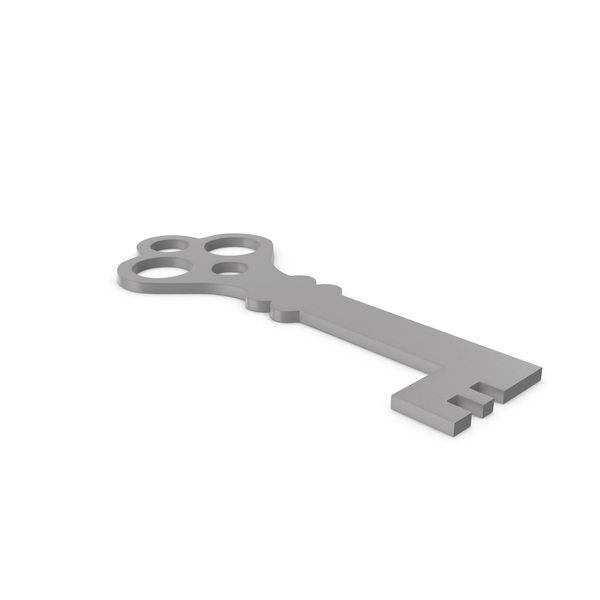 Computer: Key Grey Icon PNG & PSD Images
