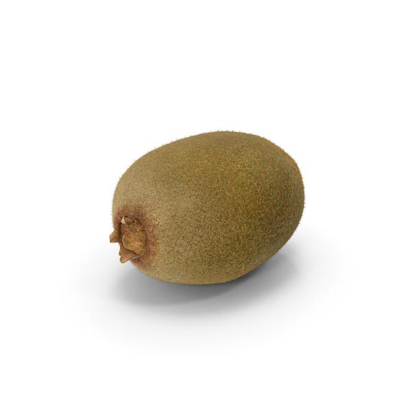 Kiwi Fruit Object