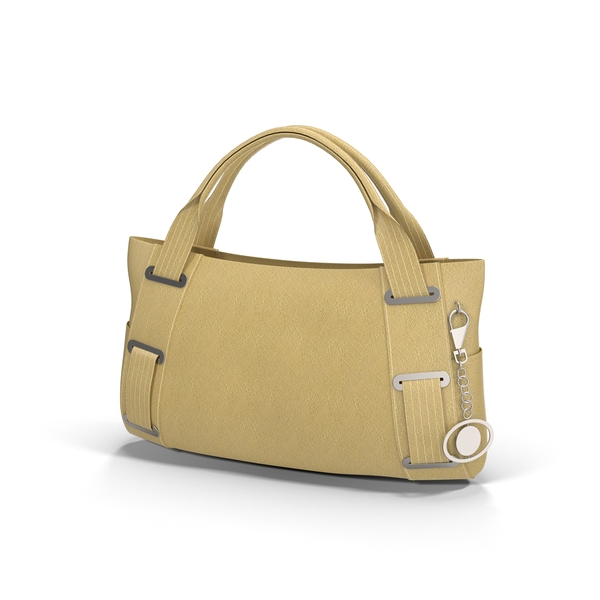 Ladies Handbag PNG & PSD Images