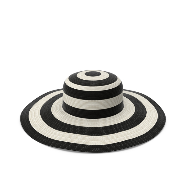 Lady's Wide Brimmed Sun Hat Object