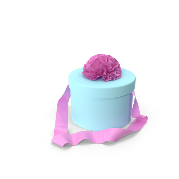 Light Blue Round Box with Pink Ribbon PNG & PSD Images