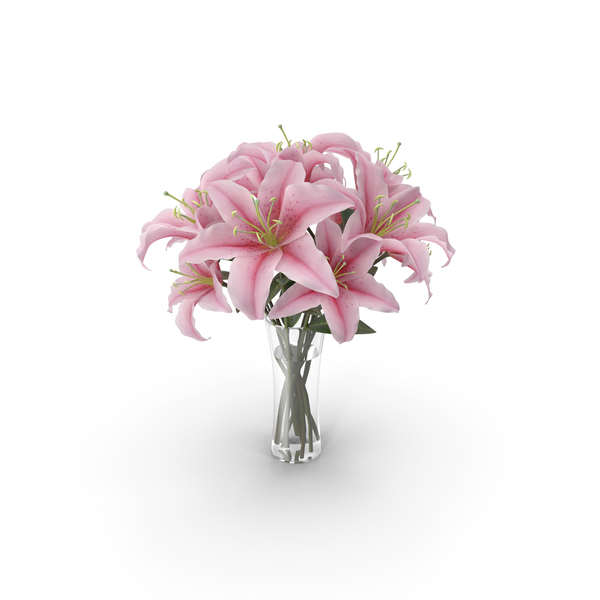 Bouquet: Lily in Vase PNG & PSD Images