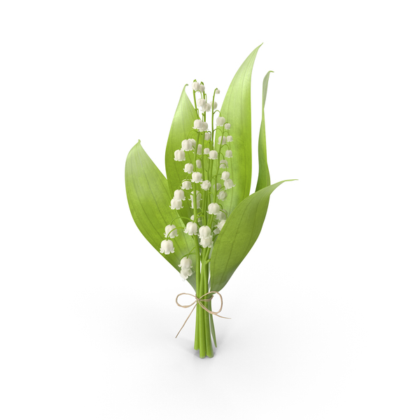Lily of the Valley Object