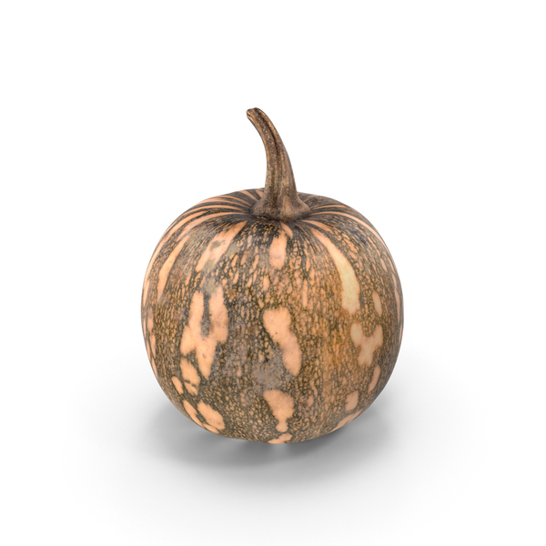 Little Pumpkin PNG & PSD Images