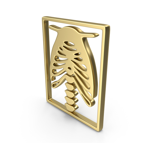 Computer Icon: Logo Xray Chest Gold PNG & PSD Images