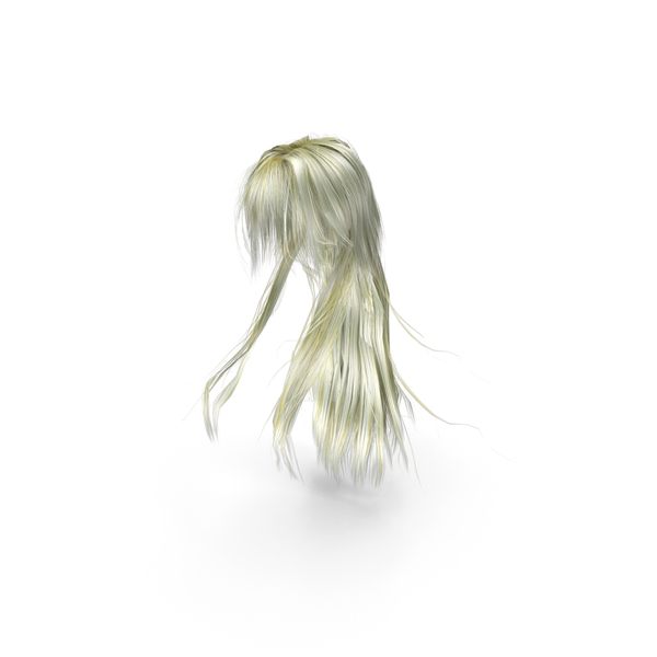 Wig: Long Blonde Anime Female Hairstyle PNG & PSD Images