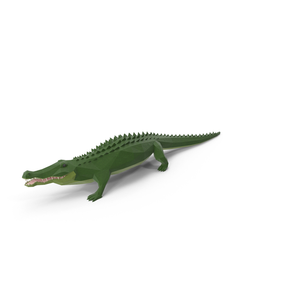 Low Poly Alligator Object
