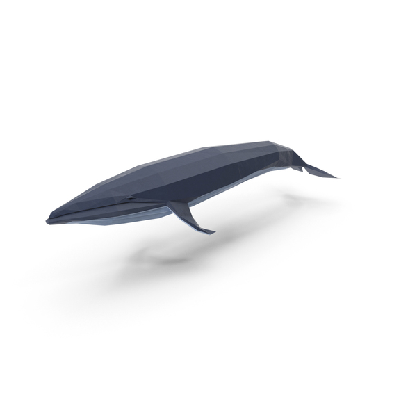 Low Poly Blue Whale PNG & PSD Images
