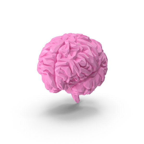 Low Poly Brain PNG & PSD Images