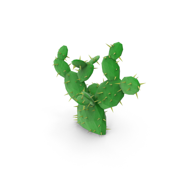 Low Poly Cactus PNG & PSD Images