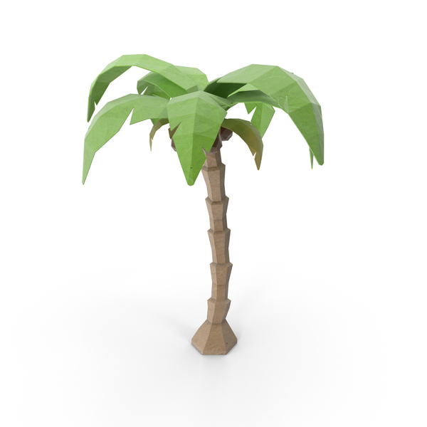 Low Poly Coconut Tree PNG & PSD Images