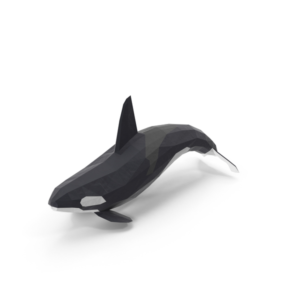 Killer: Low Poly Orca Whale PNG & PSD Images