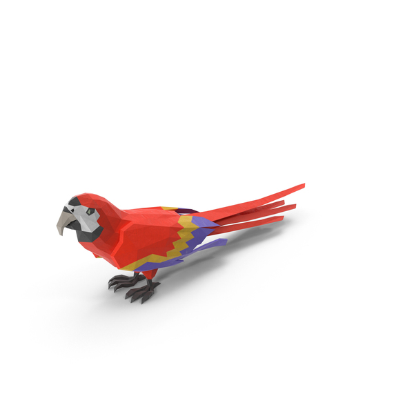 Low Poly Parrot Object