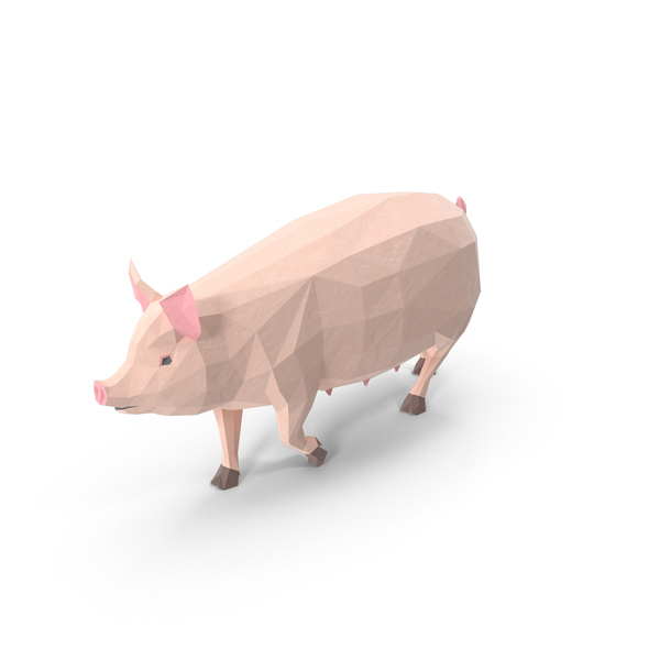Low Poly Pig Object