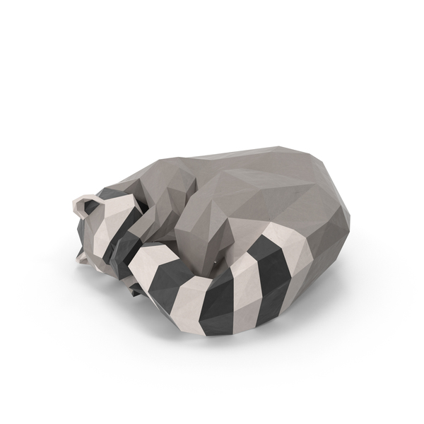Low Poly Raccoon PNG & PSD Images