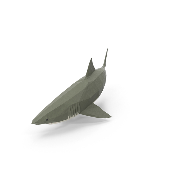 Low Poly Shark PNG & PSD Images