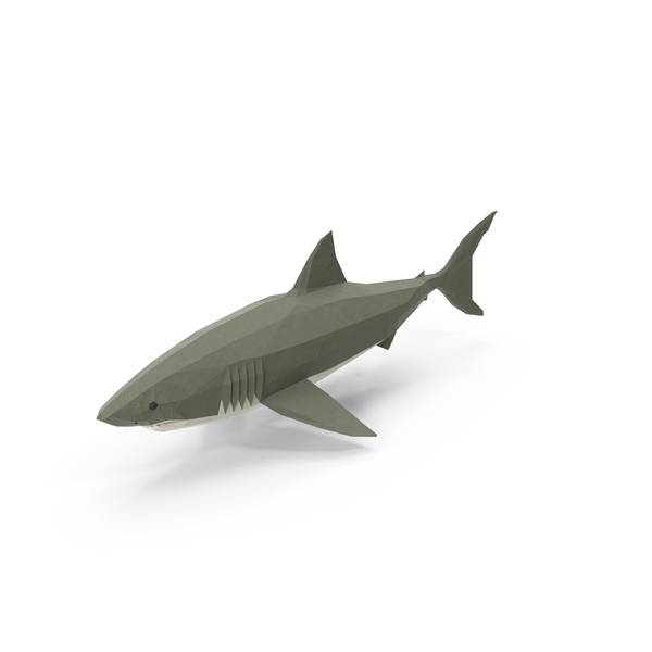 Low Poly Shark Object