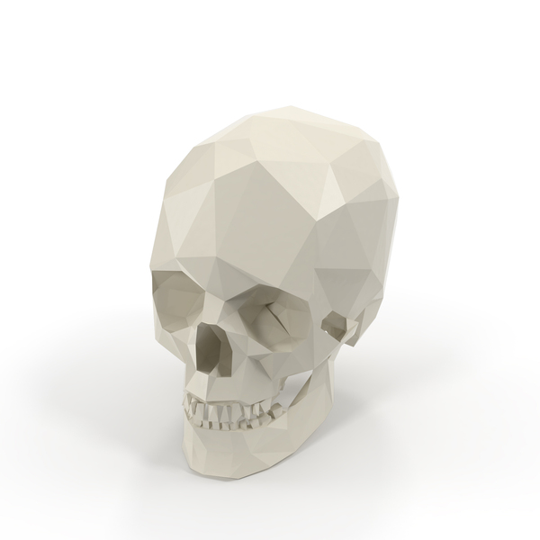 Low Poly Skull Object