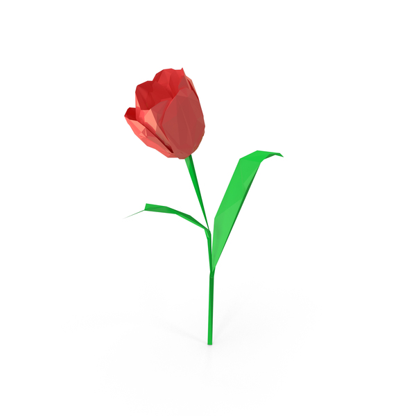 Low Poly Tulip Object