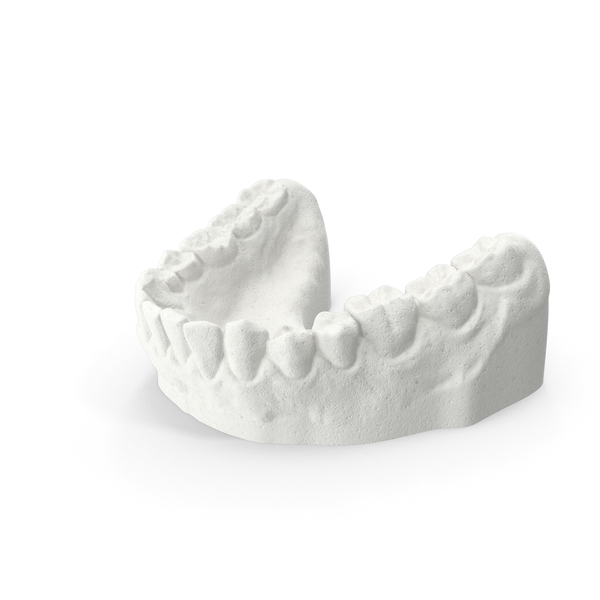 Lower Dentures Mold Clay PNG & PSD Images