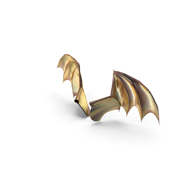Dragon: Magical Creature Wings PNG & PSD Images