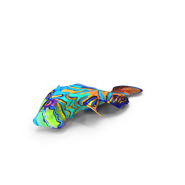 Mandarin Fish Object