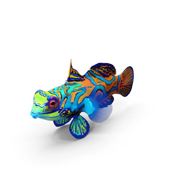 Mandarin Fish PNG & PSD Images