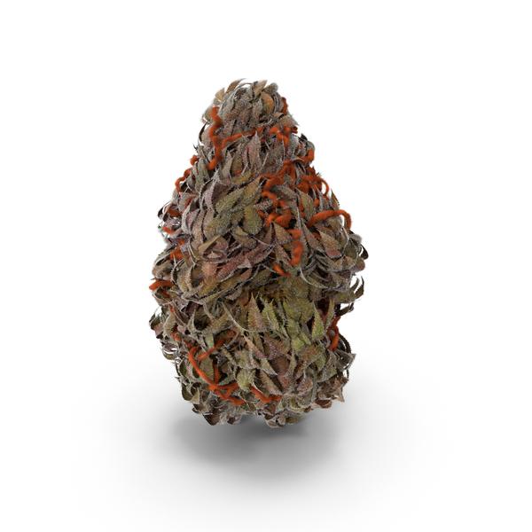 Marijuana Buds PNG & PSD Images