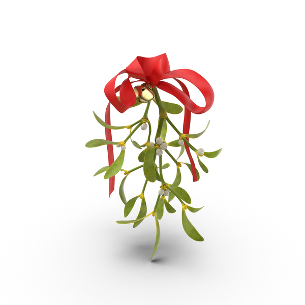 Mistletoe PNG & PSD Images
