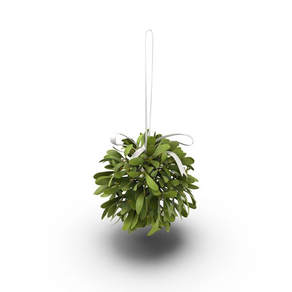 Mistletoe Object