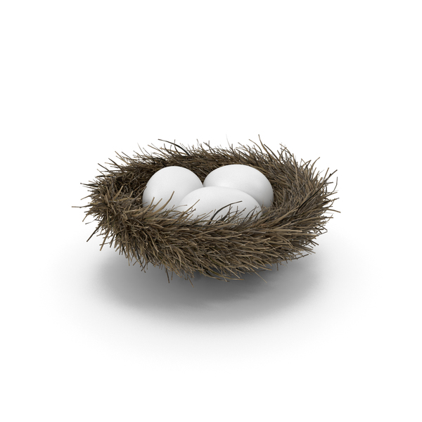 Nest with 3 White Eggs PNG & PSD Images